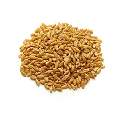 Freekeh - Wholegrain